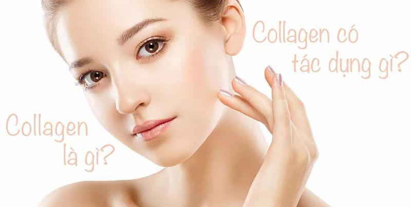 thuc-pham-giau-collagen-3